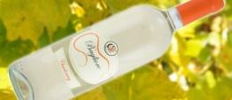 Bagliore - Chardonnay