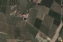 Satellite view of the vineyards
